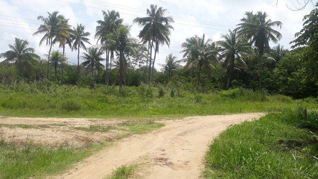 Ótimo terreno no cond. Privê Vila Velha, aceito propostas - Foto 12