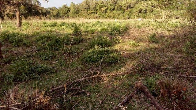 Fazenda/Sítio/Chácara para venda tem 121000 metros quadrados com 4 quartos em Rural - Pora - Foto 16