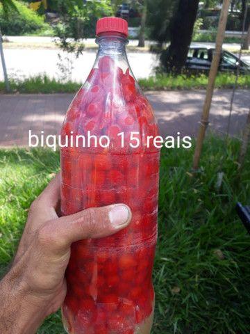 Pimenta biquinho  - Foto 5