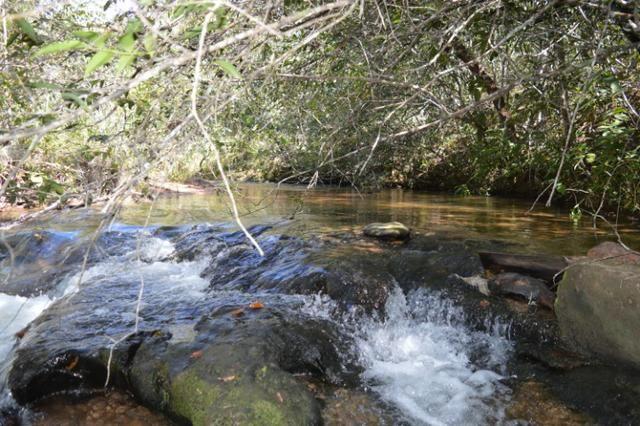 7800 hectares, Primavera do Leste-MT - Foto 9