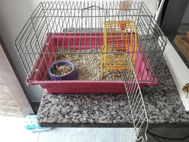 Gaiola completa + Hamster - Foto 2