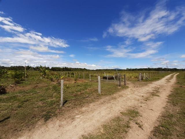 Fazenda com 160 hectares em Mucajai/RR, ler descrição do anuncio - Foto 16