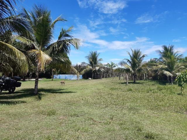 Fazenda com 160 hectares em Mucajai/RR, ler descrição do anuncio - Foto 2