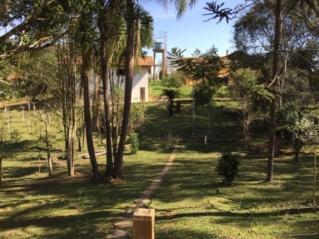Chácara em Tijucas do Sul - Excelente - Cinco Alqueires - D115 - Foto 5