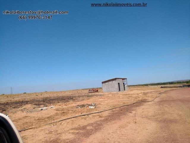 Fazenda 580 hectares nordeste mt nikolaiimoveis