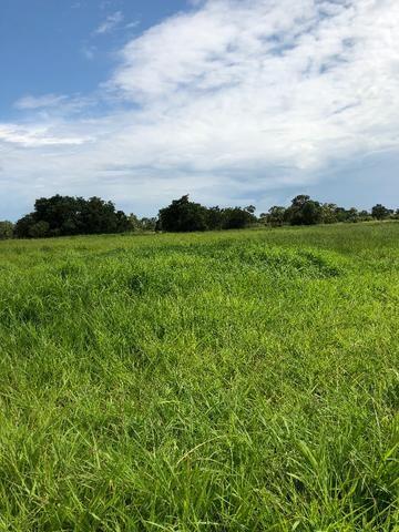 Fazenda a venda no Mato Grosso