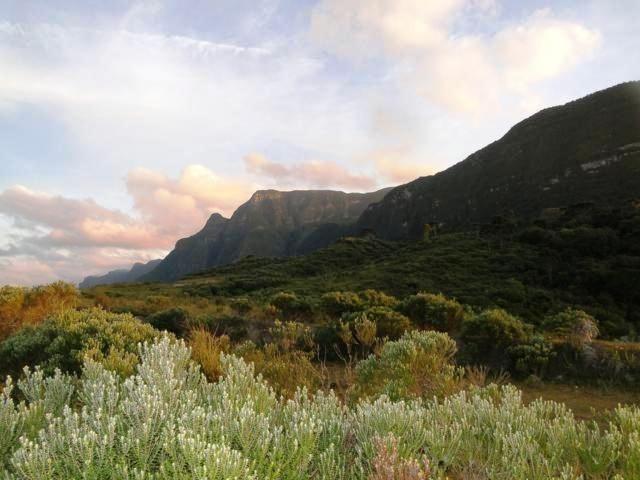 Pense num lugar bonito, sitio 5 hectares a 1000 m de altitude - Foto 14