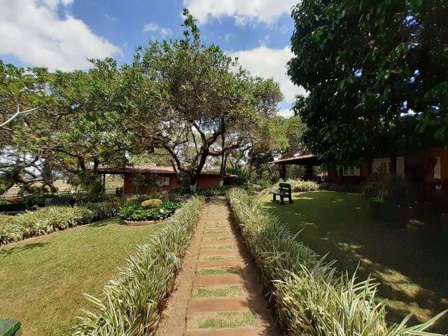 Propriedade com 14 hectares em Sairé (Cód.: fvv56) - Foto 8