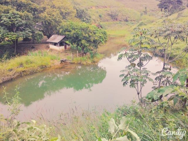 Fazenda Muito Boa na Região Veja a Descrição - Foto 4