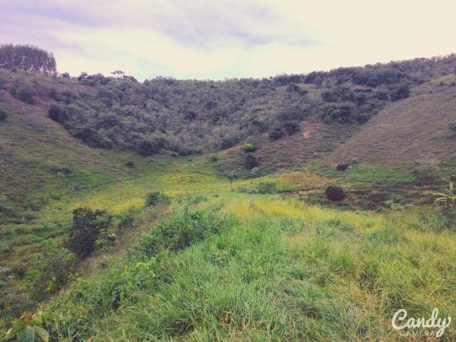 Fazenda Muito Boa na Região Veja a Descrição - Foto 13