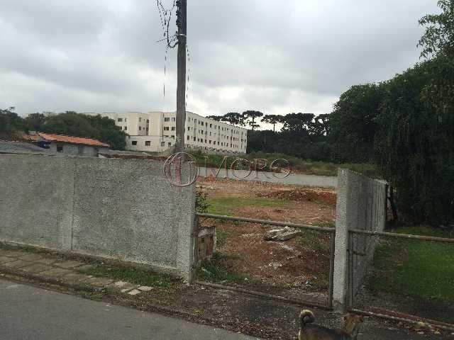 Terreno à venda em Boneca do iguaçu, São josé dos pinhais cod:93691-Moro - Foto 5