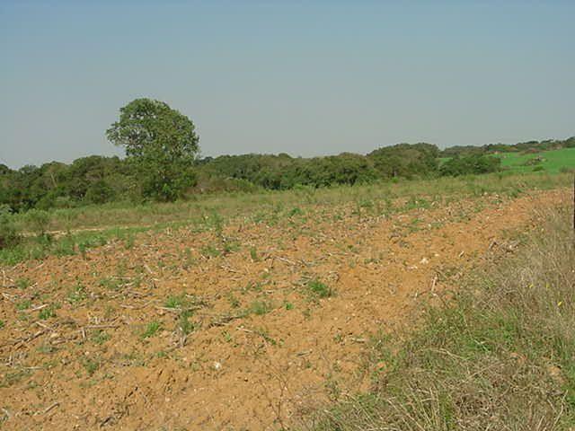 Terreno à venda em Sabiá, Araucária cod:7227-MORO - Foto 4