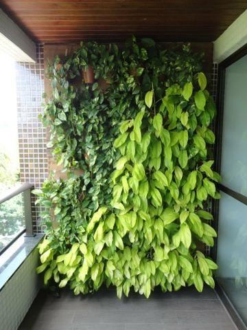 Painéis plantas - Foto 2