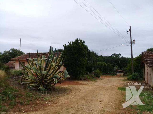Chácara - venda, 176.055 m² por r$ 1.500.000 - botiatuva - - campo largo - pr - Foto 19