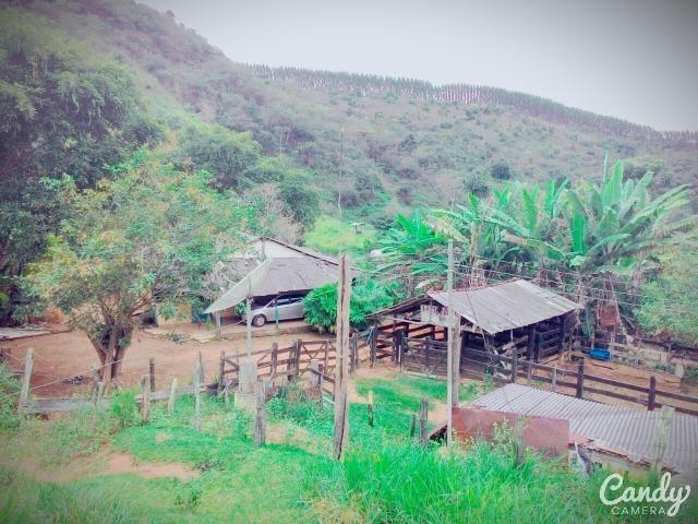 Fazenda Muito Boa na Região Veja a Descrição - Foto 9