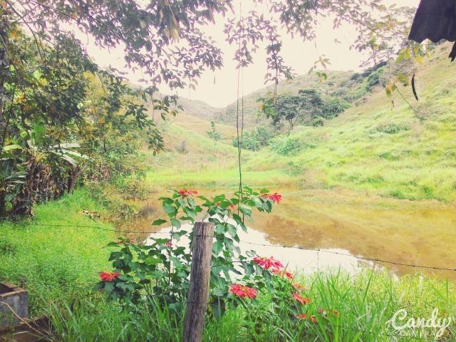 Fazenda Muito Boa na Região Veja a Descrição - Foto 2