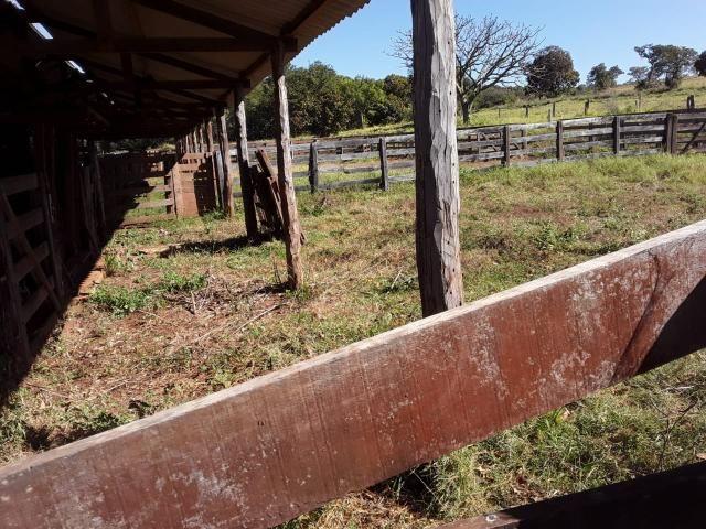Fazenda 80 Alqueires município campina verde - Foto 16