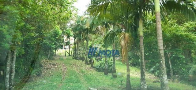 Fazenda a venda antonina com 105,2 alqueires, casa sede em 3 pavimentos, com grande capaci - Foto 13