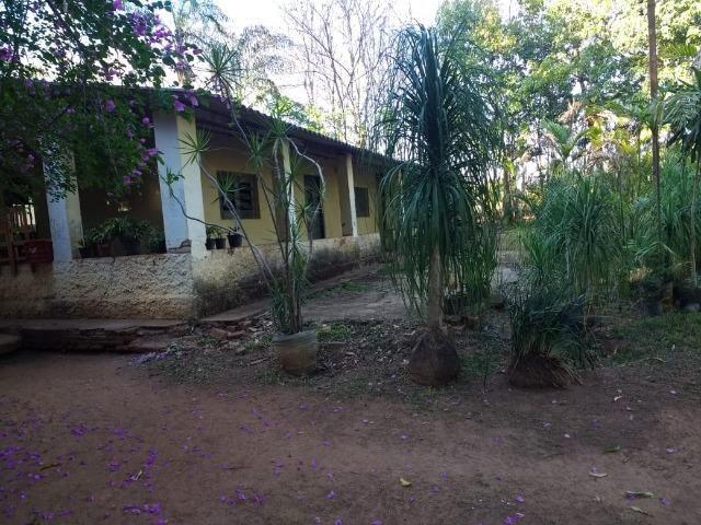 Chácara Goiânia Margem BR-153 (Pista Dupla) - Foto 4