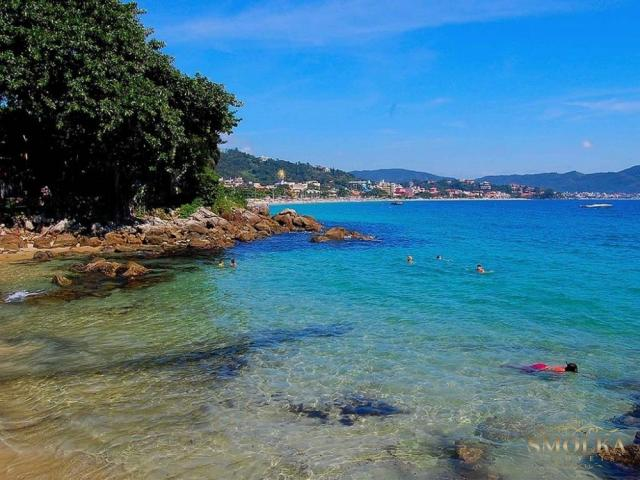 Apartamento à venda com 3 dormitórios em Jurerê internacional, Florianópolis cod:8645
