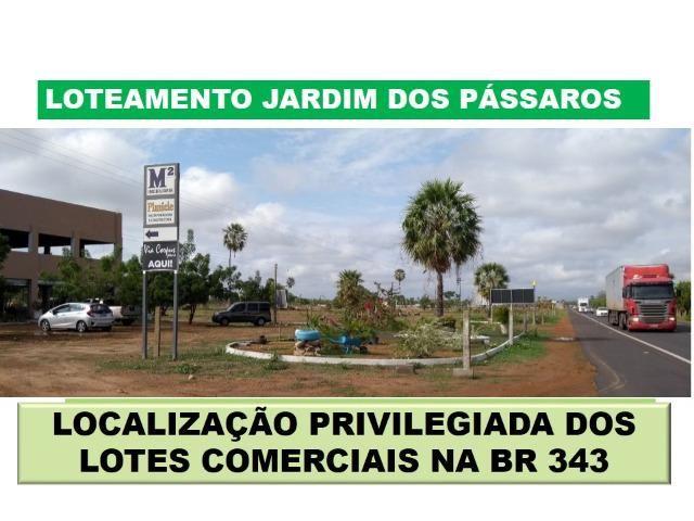 Lote em Campo Maior - Condominio Jardim dos Pássaros -medindo 600m² - Foto 15