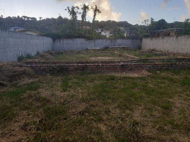Lote 15x30 com base e radier feito, escriturado no forte Orange, Itamaracá  - Foto 5