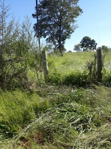 Fazenda 80 Alqueires município campina verde - Foto 9
