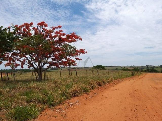Sítio à venda, 22344 m² por R$ 110.000 - Córrego do Macaco - Álvares Machado/São Paulo - Foto 3