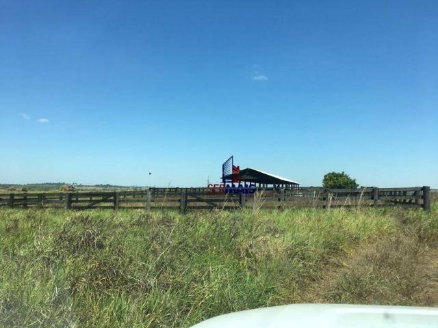 Fazenda rural à venda, á margem da BR 364, Cacoal. - Foto 18