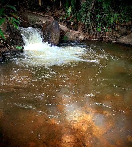 Alugamos Sítio com Cachoeira - Santa Leopoldina - Foto 6