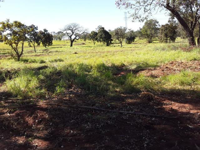 Fazenda 80 Alqueires município campina verde - Foto 13