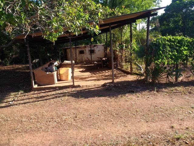 Chácara Goiânia Margem BR-153 (Pista Dupla) - Foto 15
