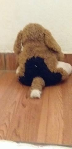 Cachorro de pelúcia - Foto 2