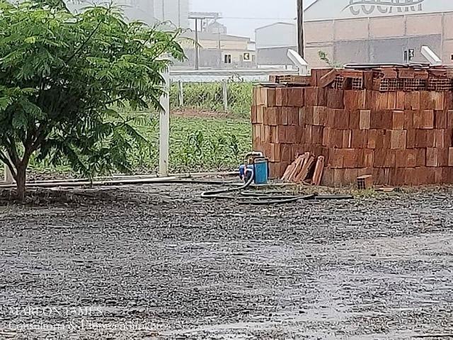 Fazenda em Campo Alegre de Goiás para plantio de soja! - Foto 11