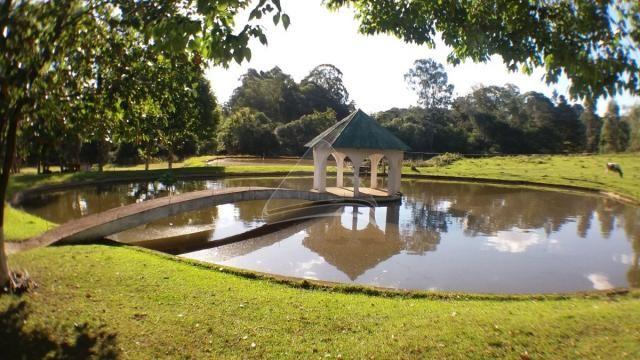 Chácara à venda em Sitio nono zonta, Passo fundo cod:8465 - Foto 20