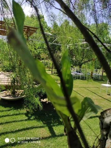 Cerimonial Garden Goddio - Foto 15