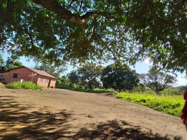 FAZENDA MUNICIPIO PINDORAMA 53 ALQUEIRES OBS. VALOR DO ALQUEIRES. - Foto 17
