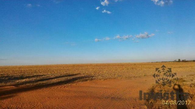 Oportunidade de excelente fazenda para agricultura!!! - Foto 3