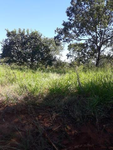 Fazenda 80 Alqueires município campina verde
