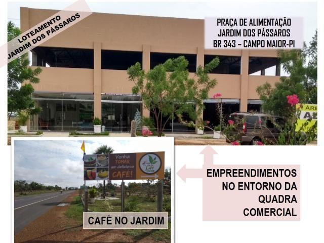 Lote em Campo Maior - Condominio Jardim dos Pássaros -medindo 600m² - Foto 14