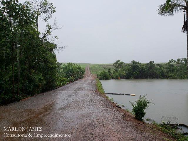 Fazenda em Campo Alegre de Goiás para plantio de soja! - Foto 7