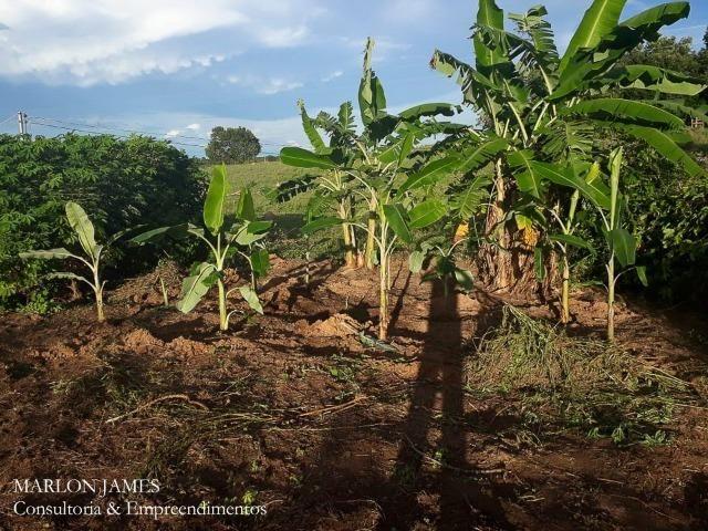 Fazenda próximo a Aragarças e 30 km de Ponte Alta para gado e lazer! - Foto 18