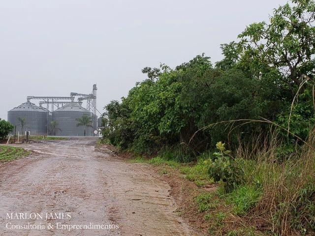 Fazenda em Campo Alegre de Goiás para plantio de soja! - Foto 10