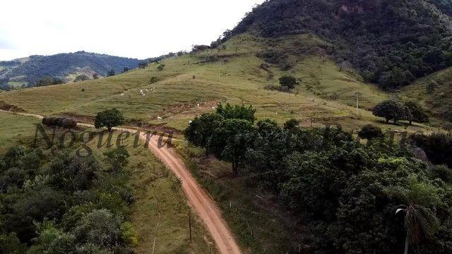 Fazenda com 80 alqueires, oportunidade (Nogueira Imóveis Rurais) - Foto 7
