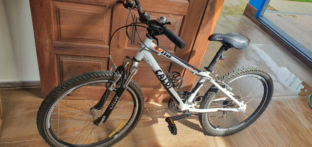 Bicicleta Caloi Mtb 21v aro 20
