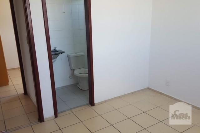 Apartamento à venda com 3 dormitórios em Monsenhor messias, Belo horizonte cod:245421 - Foto 7