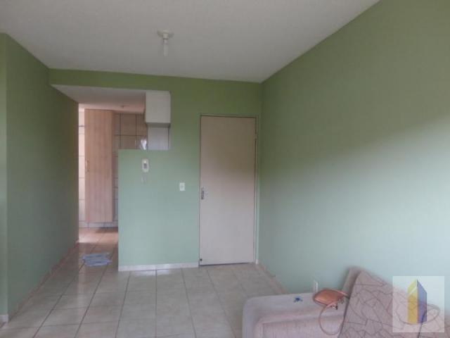 Apartamento para venda em serra, colina de laranjeiras, 2 dormitórios, 1 banheiro, 1 vaga - Foto 3