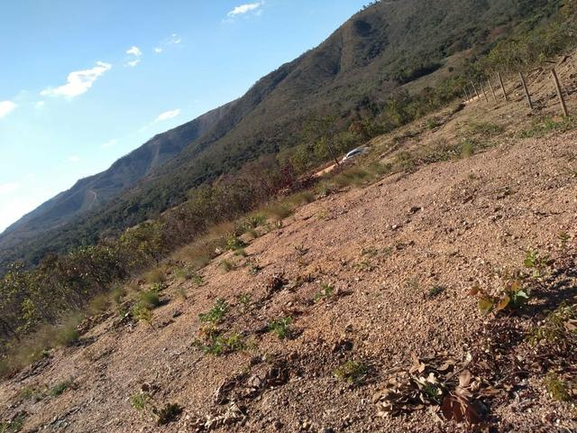 Chácara 2.000M² próximo de Baldim - Foto 2