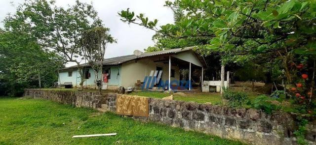 Fazenda a venda antonina com 105,2 alqueires, casa sede em 3 pavimentos, com grande capaci - Foto 8
