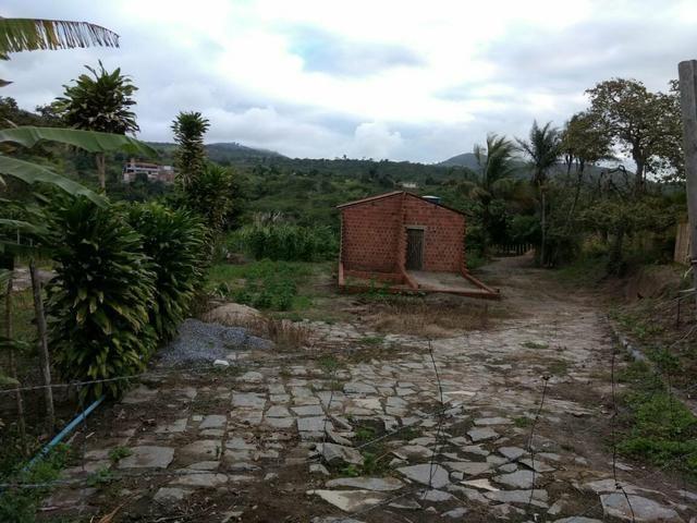 Terreno no Muricy - Foto 7